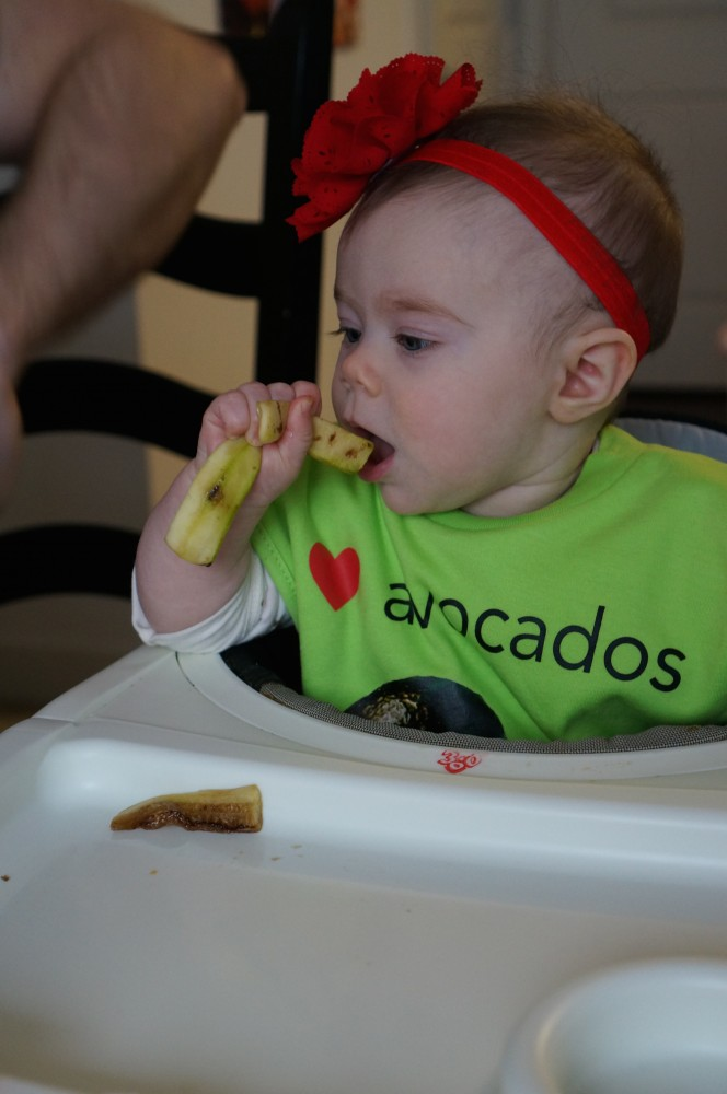 10 Basic Rules for Baby Led Weaning