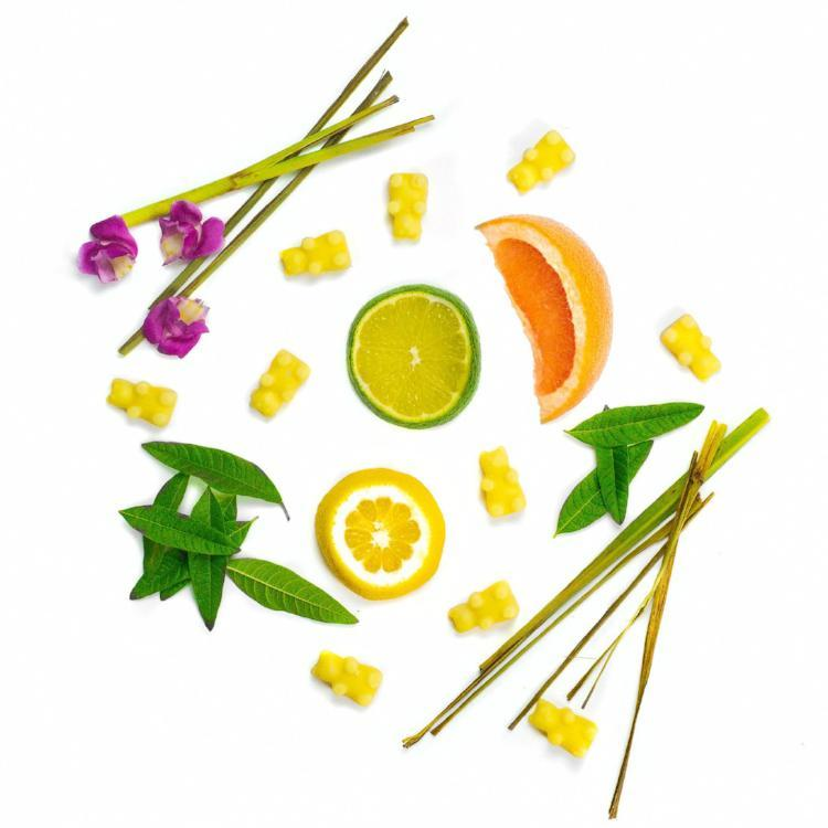 Lemon Verbena Ingredients