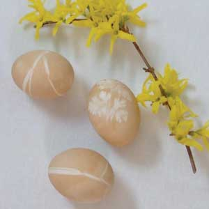 Coffee Dyed eggs with grass and flower designs and a branch of blooming forsythia