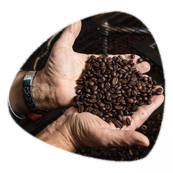 chicchi-caffe-mokary