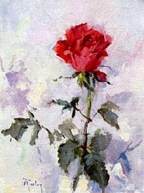 Image result for last rose of summer