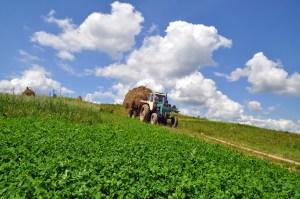 Agricoltura. Senato: approvata la legge sul Biologico, Italia prima al mondo