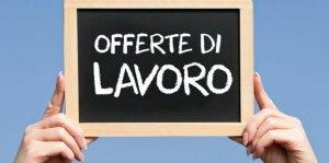 Assunzione personale di Opere e Infrastrutture della Sardegna Srl