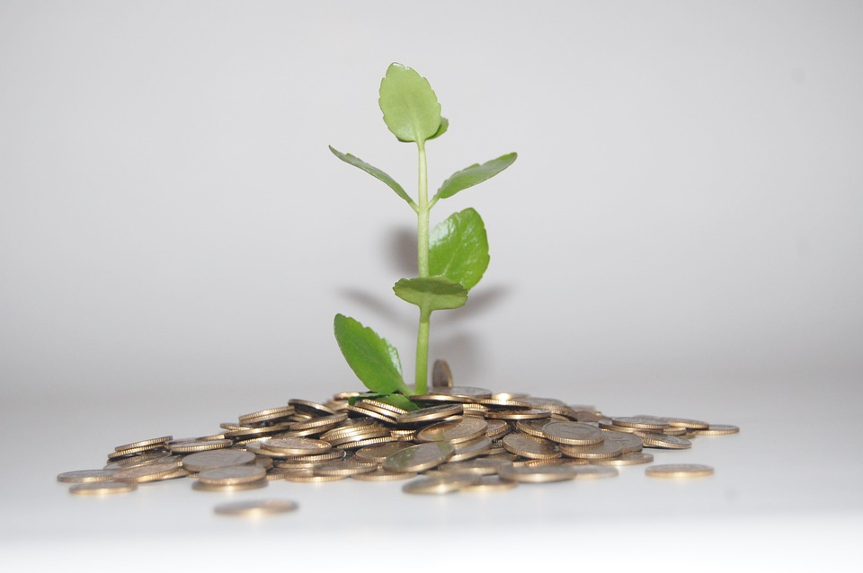 Will Debt Funds help you create wealth?