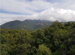 Domenica 5 Gennaio 2020 – Sedda Sa Scova / Monte Arrubiu