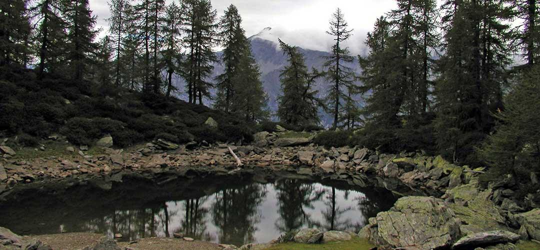 26 luglio 2020 – Lago del Grillo (Valchiavenna)