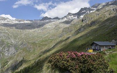 9 giugno 2021 – Bivacco Primalpia (Valle dei Ratti)