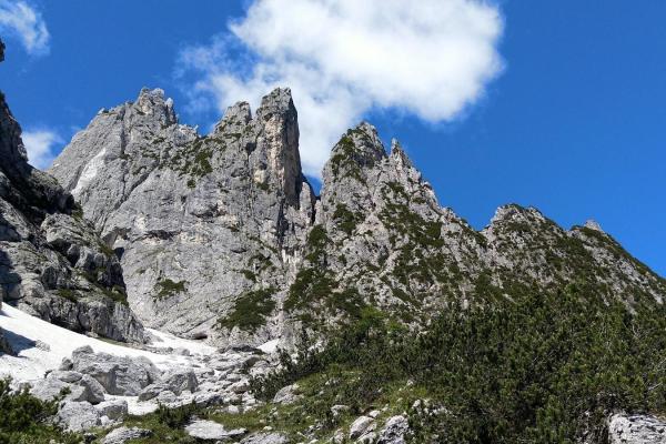 Cimonega versante Nord @ Passo Cereda