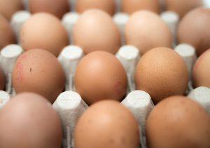 eggs-551292_960_720