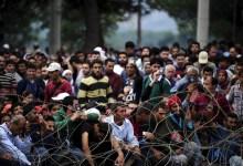 """""""اوفبرا"""" يؤكد ضرورة استقبال اللاجئين بشكل لائق"""