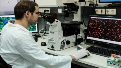 """علماء روس يكتشفون """"مياه"""" تقضي على فيروس كورونا"""
