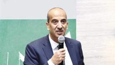 السفير أسامة عبد الخالق