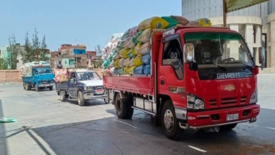 صوامع كفر الشيخ تستقبل 2777 طن قمح من المزارعين