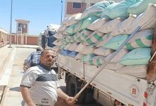 تموين كفر الشيخ استلام 170 ألف طن قمح من المزارعين