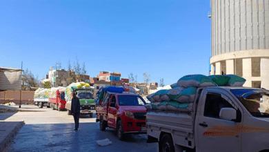 تموين كفر الشيخ: ارتفاع معدلات توريد القمح إلى 158 ألف طن