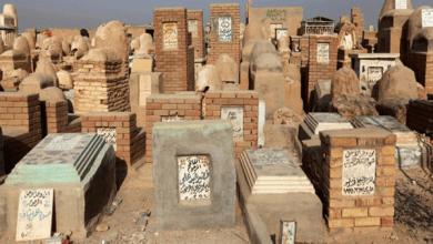 استخرج 30 جثة.. القبض على نابش القبور في المنوفية