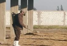 محافظ كفر الشيخ يوجه بتطهير أسواق الماشية بعد إعادة فتحها مؤقتًا
