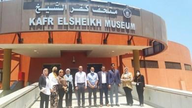نتائج عمل متدربي البرنامج الرئاسي بكفر الشيخ خلال الأسبوع السابع