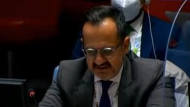 مندوب المكسيك بمجلس الأمن يحذر من نشوب صراع بالمنطقة بسبب سد النهضة