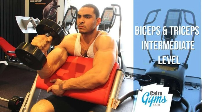 Biceps & Triceps - Intermediate Level