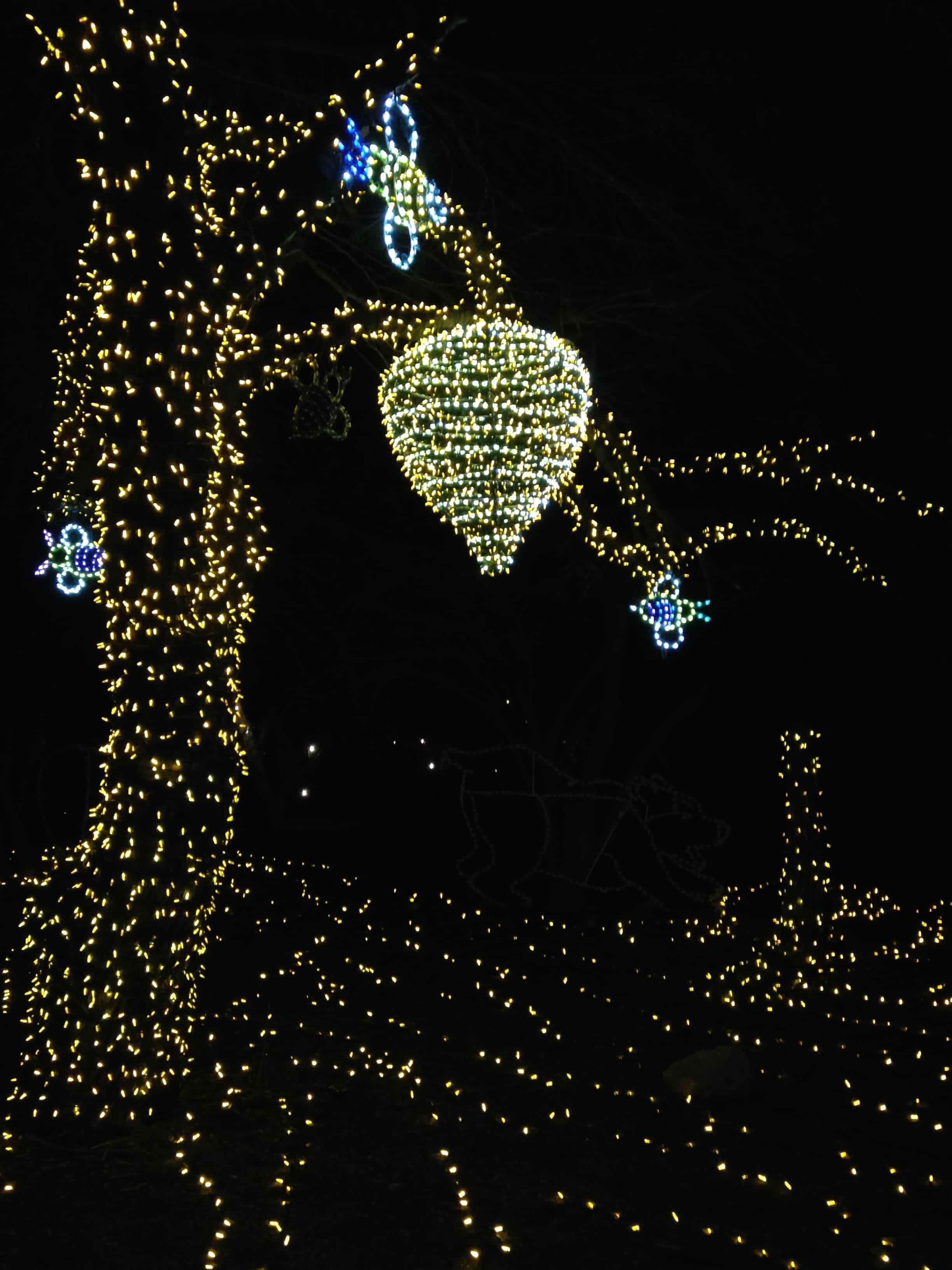 Phoenix Holiday Light Displays