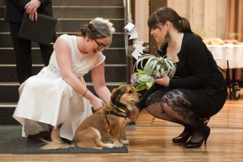 The bride removes her wedding rings from their family dog