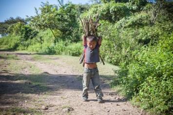 A boy gathers firewood in San Jose de las Lagrimas, Guatemala