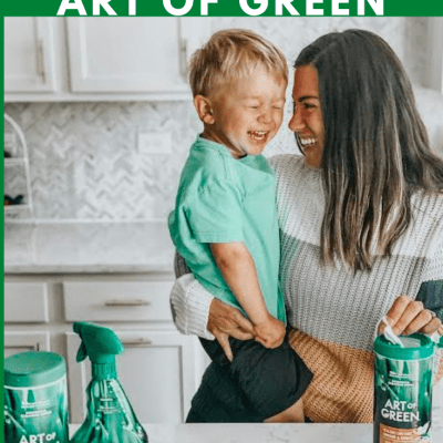How To Keep Our Home Clean With Art Of Green