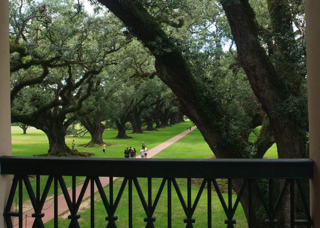 Here is the view from the second story of Oak Alley plantation. The tourist in the view offer a point of reference as to the size of the trees.