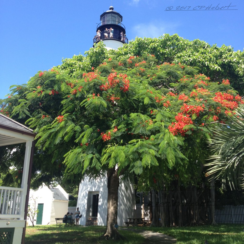 The lighthouse in Key West was commissioned in 1848. Due to technological advances, it was decommissioned in 1969.