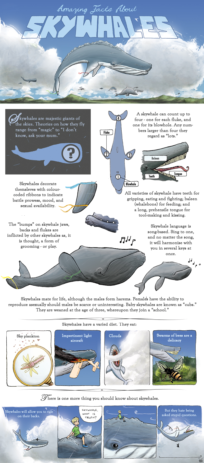 Amazing Facts About Skywhales