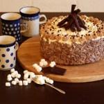 Toasted Marshmallow Hot Chocolate Cake