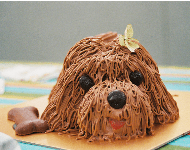 Doggie Birthday Cake Picture Cute Small Dog Face Cake Png