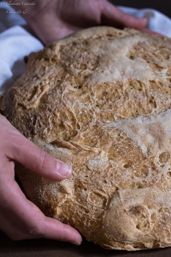 Pane con licoli e semola di grano duro