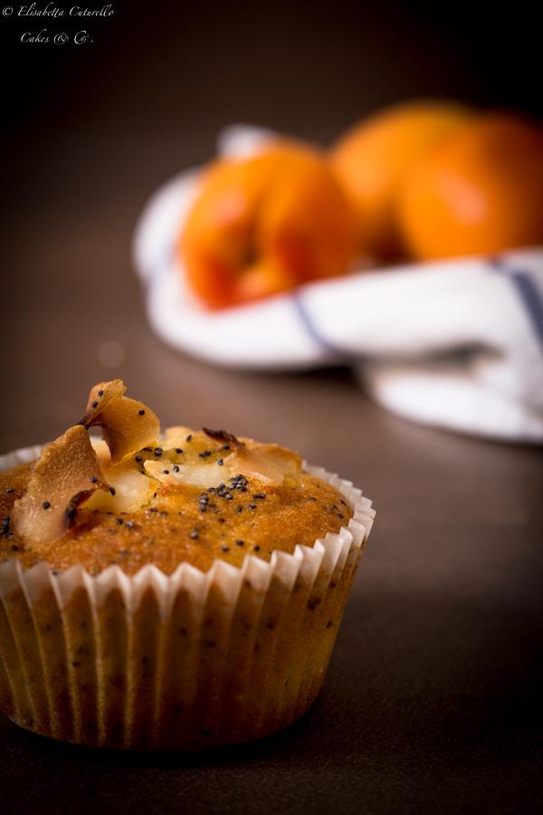 Muffins albicocche cocco semi di papavero