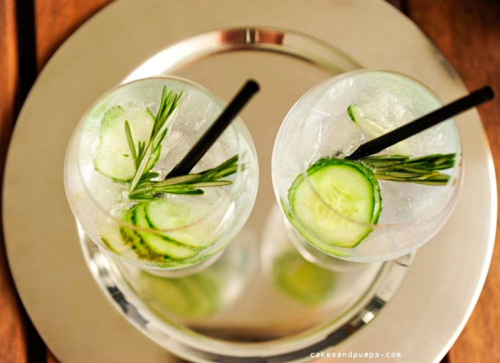 Closesup gin tonic Hendricks gin