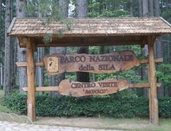 Parco della Sila in Calabria: cosa sapere