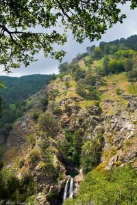 Monte del Maesano