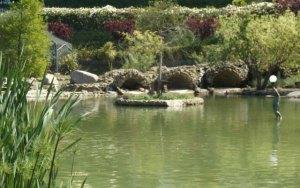 parco della biodiversità calabria