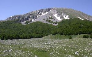 Monte del Pollini