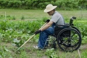 disabili-orto-300x200