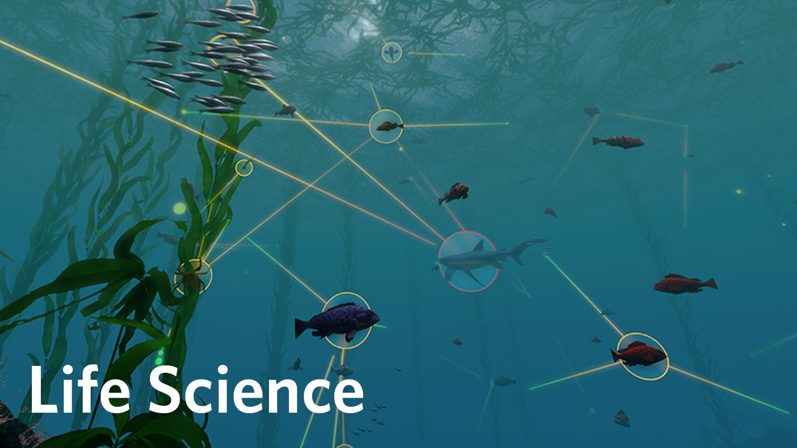Life Science Activities Amp Lesson Plans