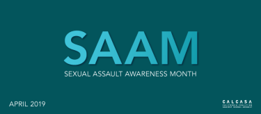 SAAM 2019 cover