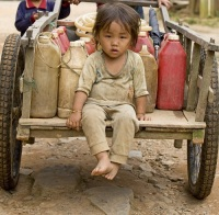 День установлен в знак признания прав девочек и проблем, с которыми им приходится сталкиваться во всем мире (Фото: Muellek Josef, Shutterstock)