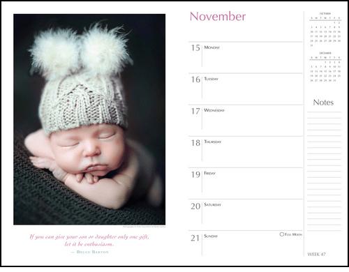 2017 Cute Planners, Organizers, Datebooks, Agenda Calendars, 2018