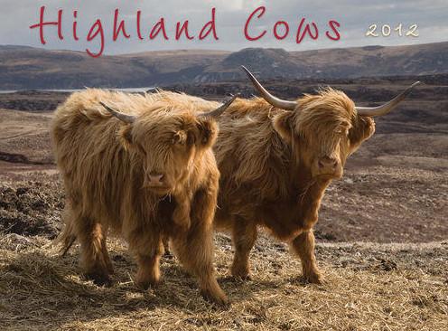 cow wall calendars