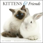 Cute Baby Animals Calendar 2013