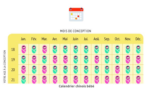 calendrier chinois bébé