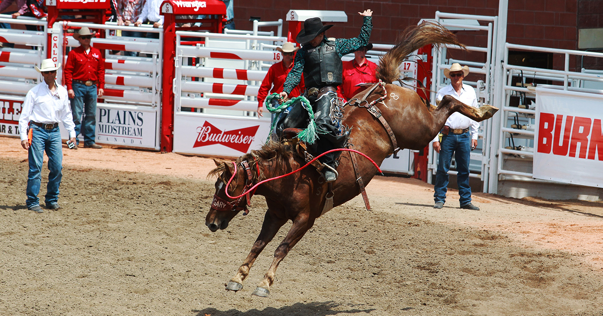 2017 Rodeo Events Amp Tickets Calgary Stampede