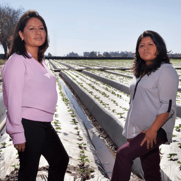Dulce Vargas (left) and Irene Gomez stand in an Oxnard strawberry field, where the clients they serve work. Photo: Lori Eanes